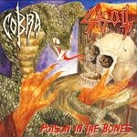 COBRA / SKULL | Poison in the bones