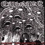Carnage | Live Stockholm 4-11-89