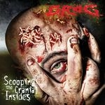 GROG | Scooping the cranial insides