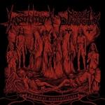 INSOLITUM / MORBID PERVERSION | Abysmal Necroalliance