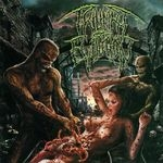 TRIUMPH OF EVILUTION | Split
